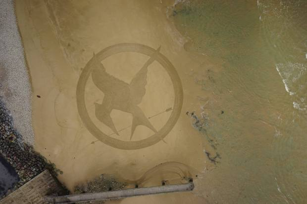 mockingjay omaha beach france
