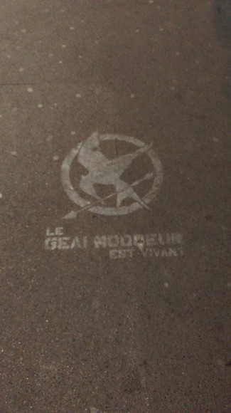 mockingjay paris pavement france