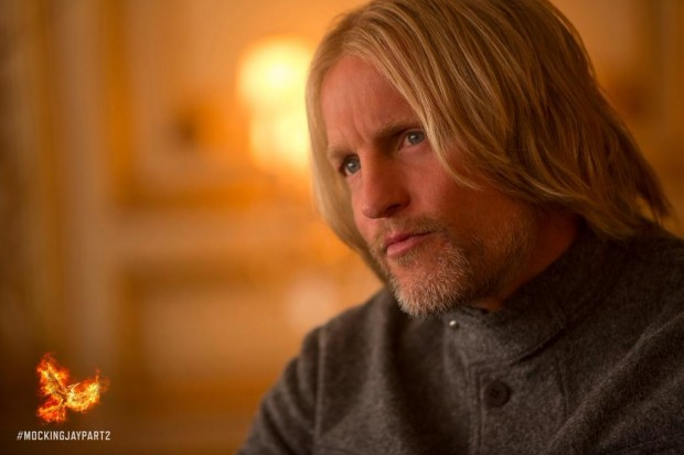 haymitch capitol voting